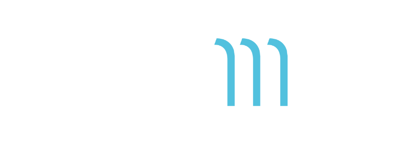 Themis Consultancy